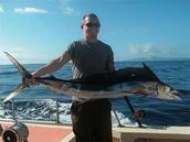 shortbillspearfish 2